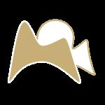 Logo de la page Wayna Pitch