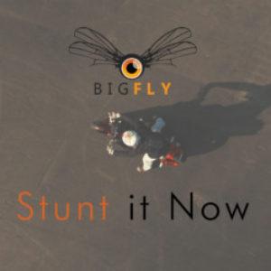 Logo de la page Stunt it Now